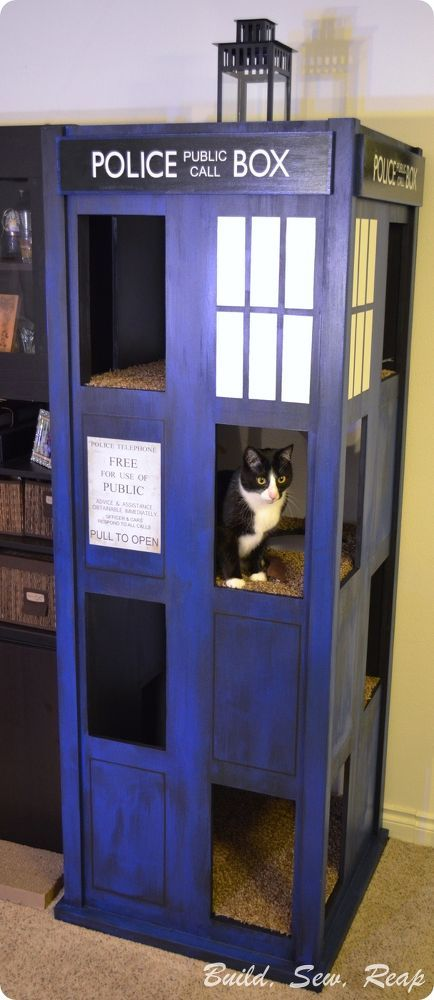 Building a Dr. Who Cat Home