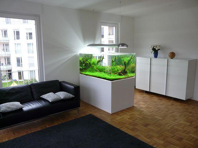 modelos de aquários na decoração | aquariums, nature aquarium and