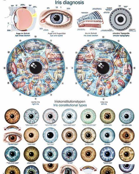 Irisdiagnose: Was die Augen über deinen Körper verraten