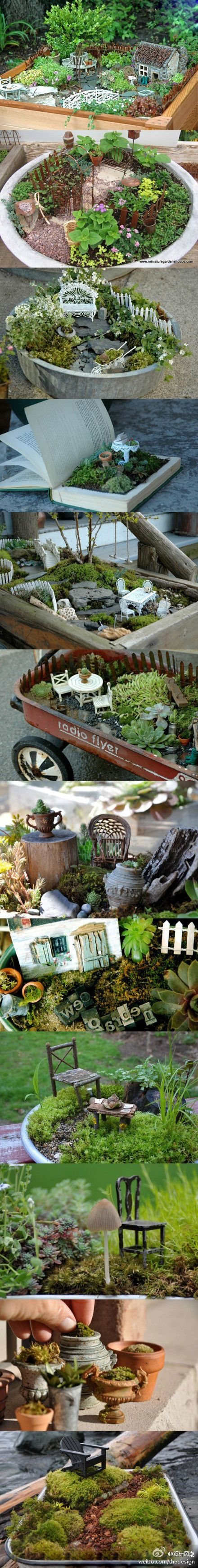 Miniature gardens!  So adorable and so creative.  Beautiful for any garden but especially nice if you don't have space.