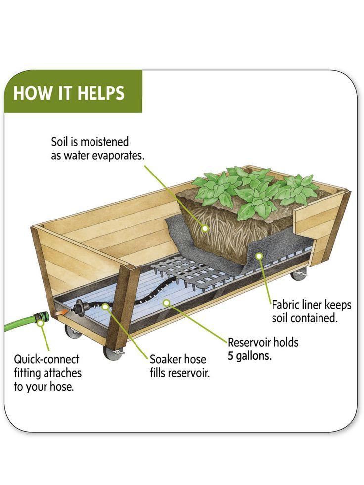 Elevated Rolling U Garden Cedar Planter Box And Watering System U0026 Buyu2026