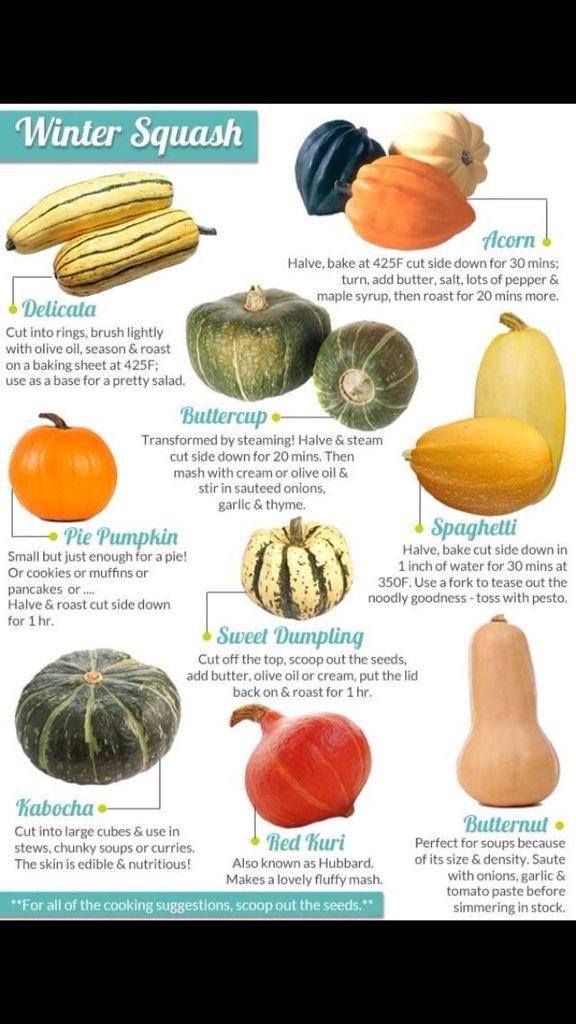 Different types of squash