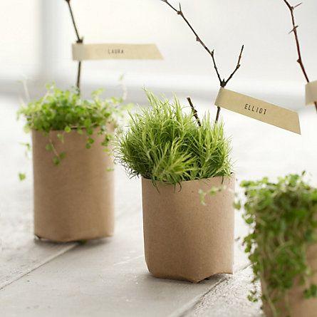 Paper Pot Press - Urban Homesteading Project