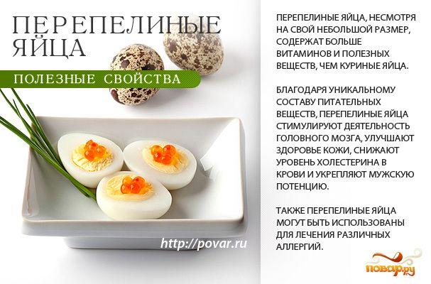 Перепелиные яйца - полезные свойства