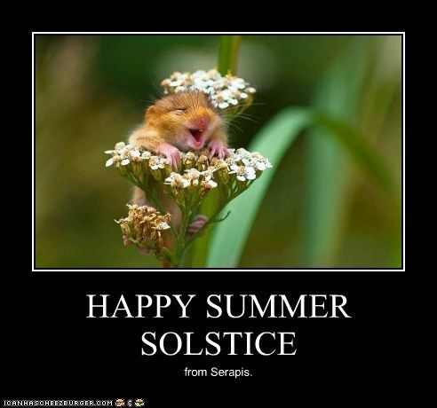pin by tammy marsh on the land of endless summers pinterest