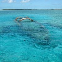 Undiscovered Bahamas: Top 15 Things to Do in the Exuma Cays | Fodor's