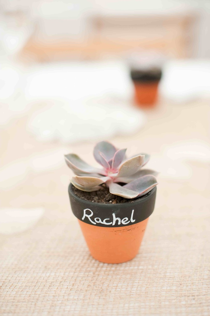 Our wedding favour and place names... succulents in little terracotta pots. Chalk paints and pens for the names