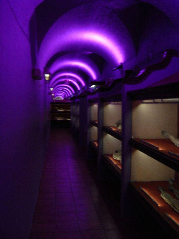 "MUSEO DE LAS MOMIAS DE GUANAJUATO Mexico's astounding mummy museum with ""the world's smallest mummy"""