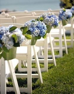 Hydrangea wedding aisle...if you go with blue bridesmaid dresses. I'd add blue petals on the grass on both sides of the aisle as well. #timelessstreasure