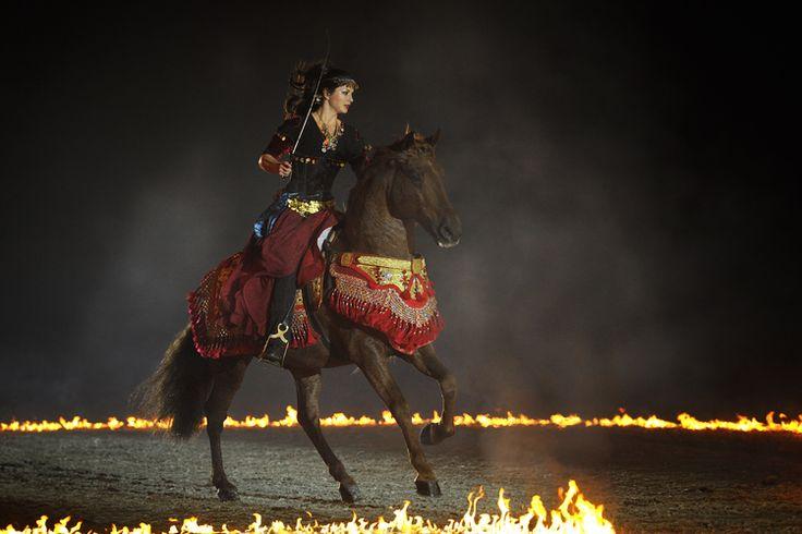 Clemence Faivre - Spectacle equestre.
