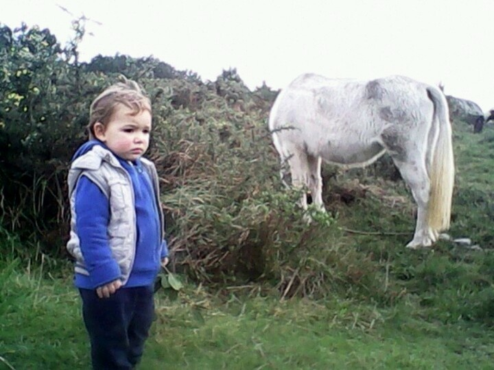 mi nieto nicolas esta asustado por el caballo
