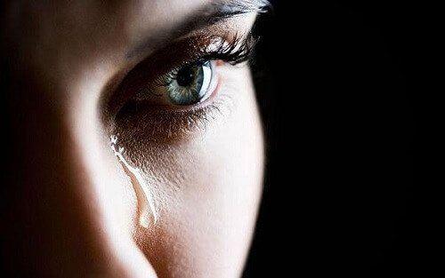 Las lágrimas son producidas por la glándula lacrimal y sirven como lubricantes para los ojos, cumpliendo la función de nutrir y limpiar la córnea.