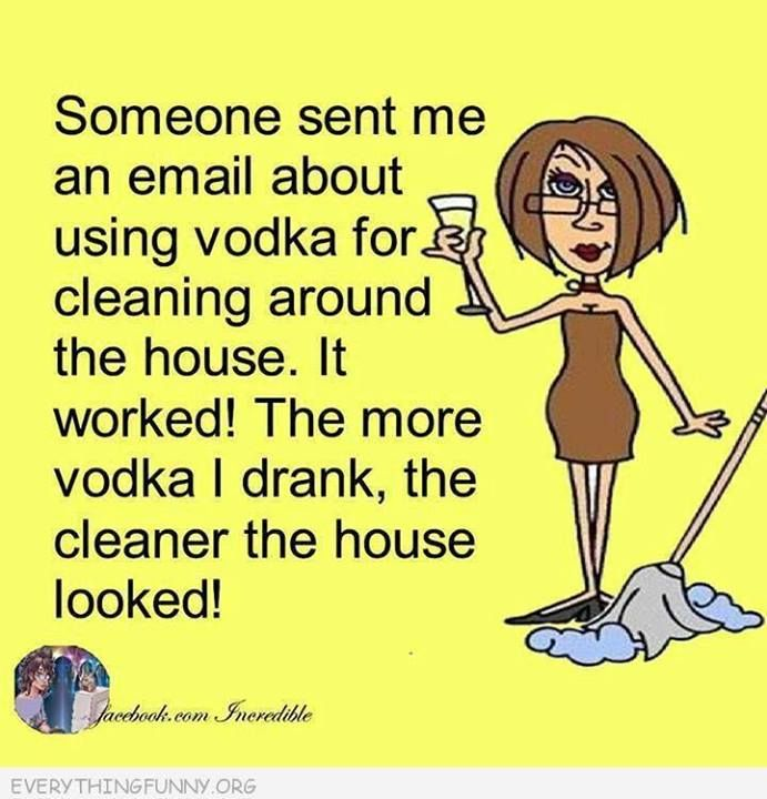 Messy Kitchen Cleaning Games: 173 Best Cleaning Quotes Images On Pinterest