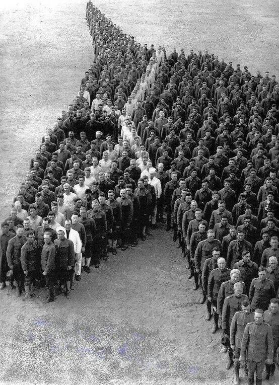 "historywars: "" War veterans tribute to war horses. A really nice gesture. """