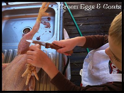 Chicken Processing on the Farm