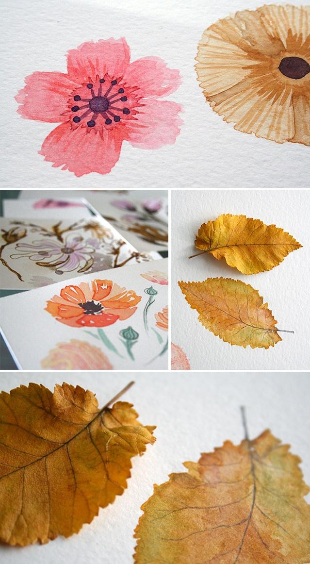 NatureStudies   Tallers   Pinterest