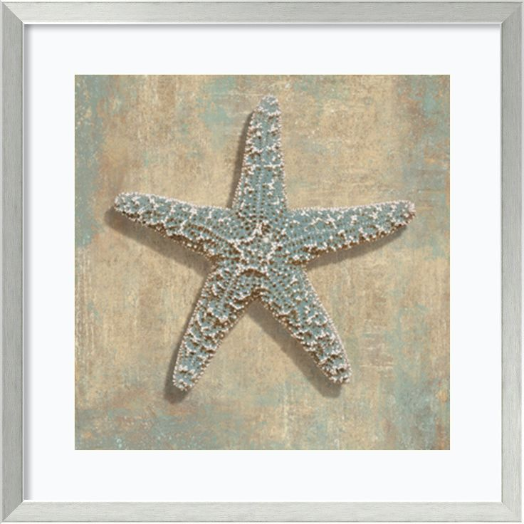 'Aqua Starfish' by Caroline Kelly Framed Art Print