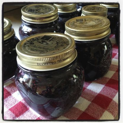 17 best ideas about blueberry lemon jam on pinterest blueberry jelly jelly and lemon jam - Jam without boiling easy made flavorful ...