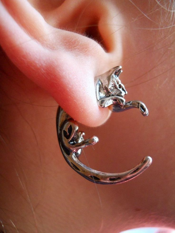 Cat Earrings Pastal Names