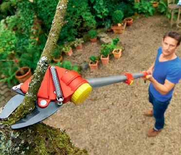 Ladder free tree trimming tools - now you can trim your trees easily, ladder-free!
