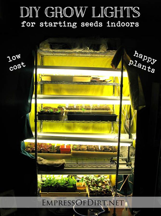 DIY Grow Lights For Starting Seeds Indoors Read HERE ---  http://www.livinggreenandfrugally.com/diy-grow-lights-starting-seeds-indoors/