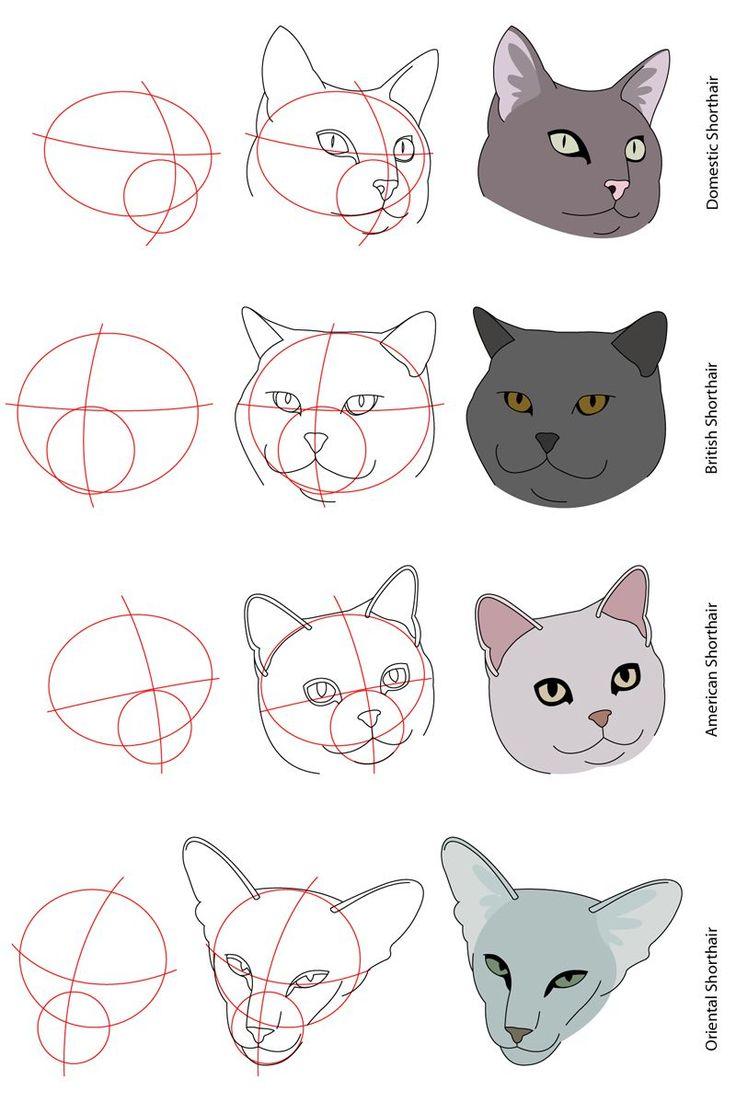 Рисовать дома кот