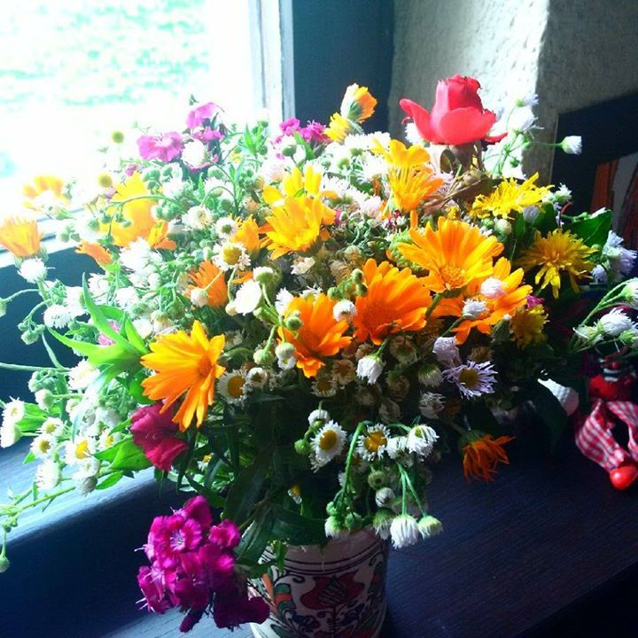 Morning joy! Summer flowers - what else would one want to get the morning started with good vibes :p