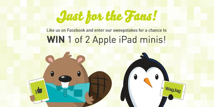 Check out WagJag's Just for the Fans Sweepstakes! You could win 1 of 2 Apple iPad Mini's!