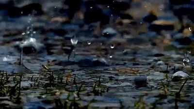"""nordicsublime: """" seasonalwonderment: """"~ April Showers ~ """" rain """""""