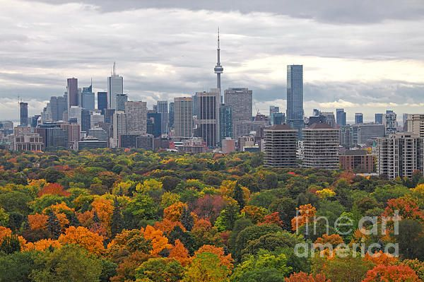 Toronto Autumn 2012 by Charline Xia