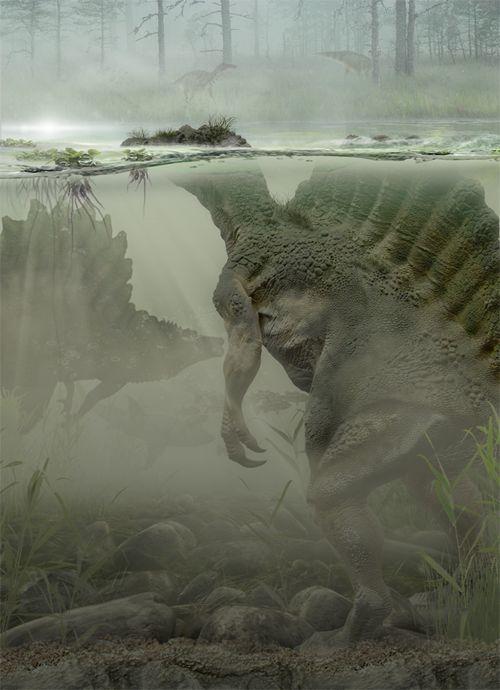 Spinosaurus puede ser el más grande terópodo para acechar siempre las Américas prehistóricos ; cree que es incluso más grande que el T -Rex , con maquillaje que es la mitad de aves / medio cocodrilo.
