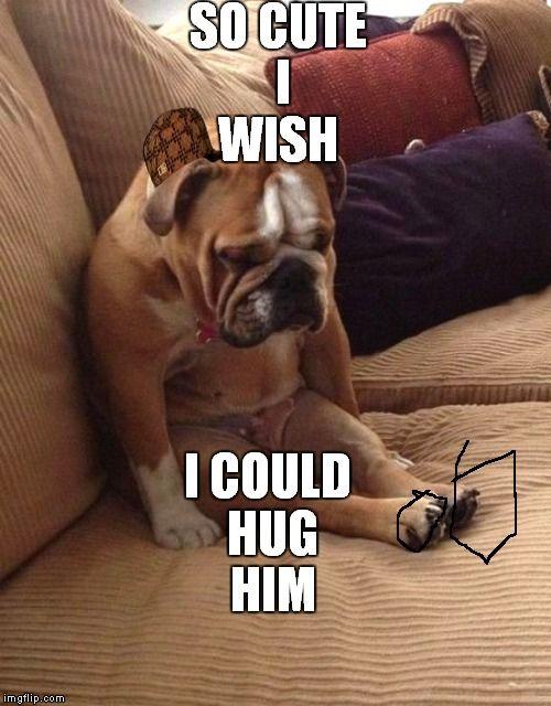 Sad bulldog Meme Generator - Imgflip