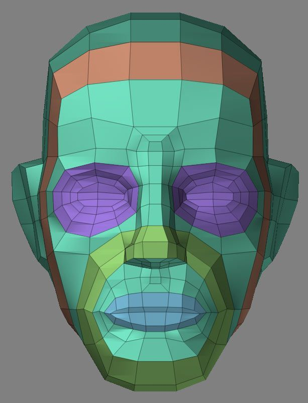 3D Human Wireframe Face - Typologie