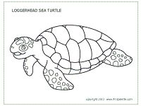 41 best Ocean books, colouring and arts and crafts images