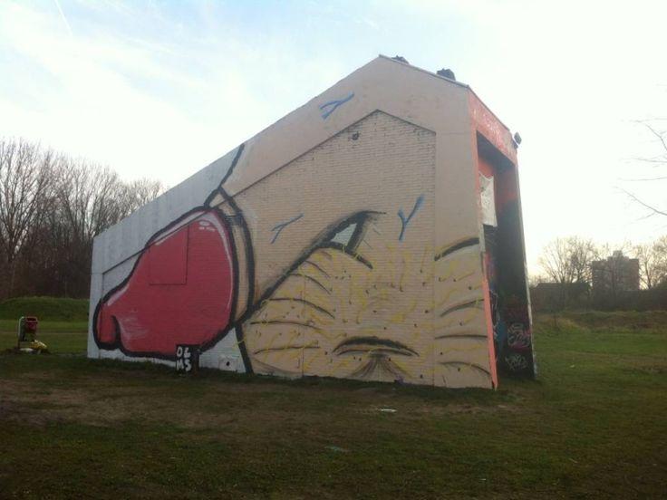 Pikant staaltje graffitikunst op terrein oude ijsbaan Deventer