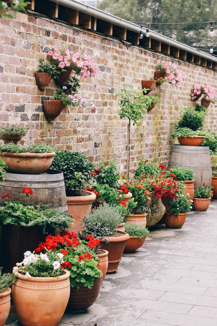 The Grounds of Alexandria Market — like the height variation and pots layout. not too many different kinds of pots either. not as keen on the plants