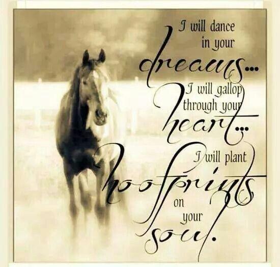 citater om heste www side 6