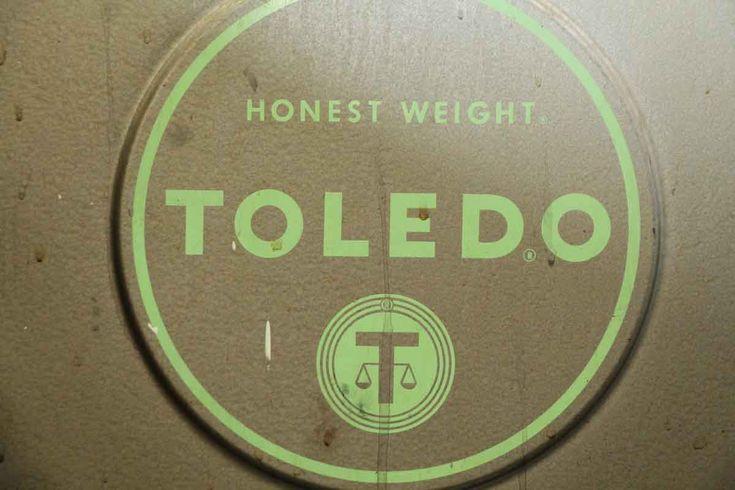 Image result for toledo scale logo