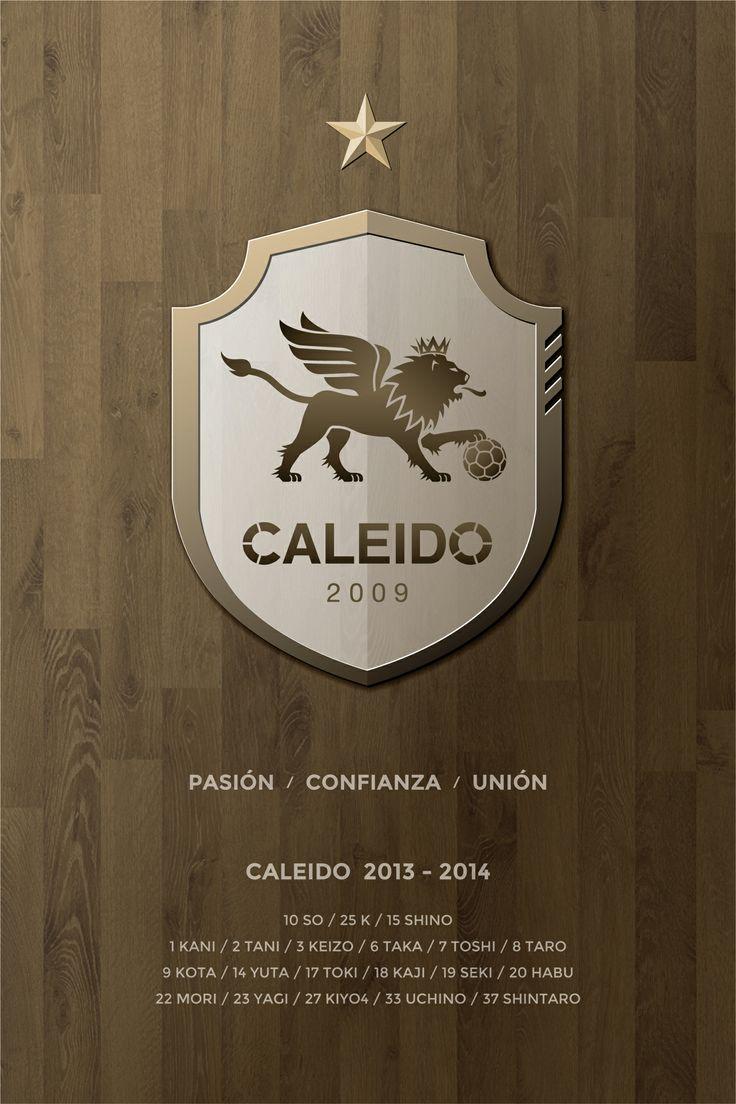 CALEIDO 2013 - 2014