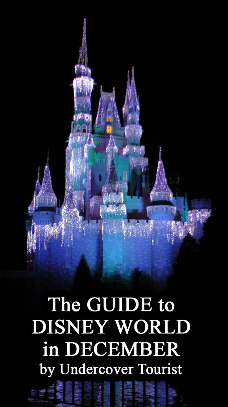 173 best Disney for Adults images on Pinterest | Vacation, Disney ...