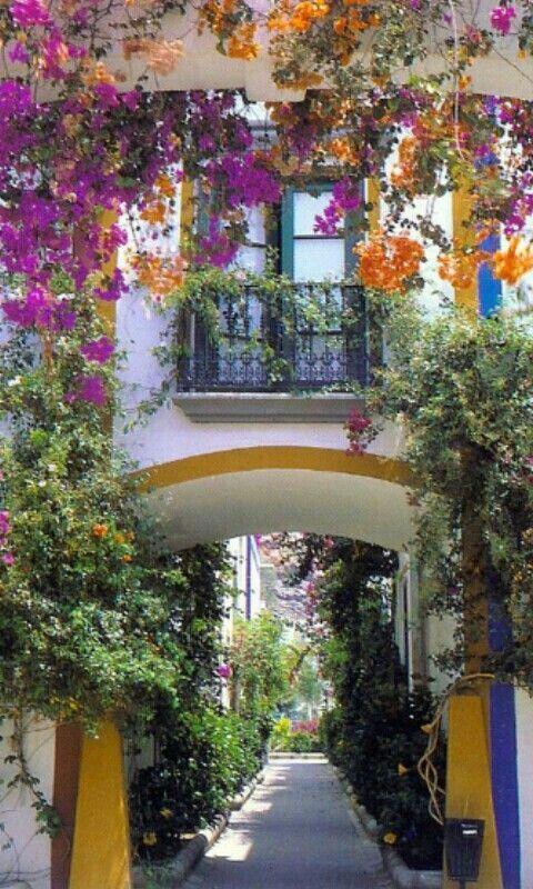 Composiciones florales en los edificios de Las Palmas de Gran Canaria, Island in Spain.