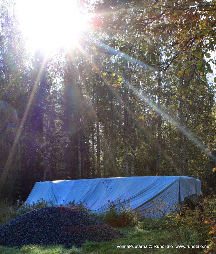 Runotalo Projekti, hirret odottavat pressun alla tontille pääsyä. Keväällä 2015 tontilla jatketaan ja toivottavasti hirret alkavat rakentua seiniksi.