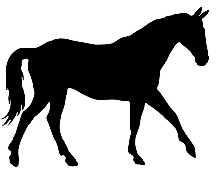 All the above silhouettes of horses and horse heads are all new and pretty big, so you can use them for framed pictures and cards. Description from clipartqueen.com. I searched for this on bing.com/images