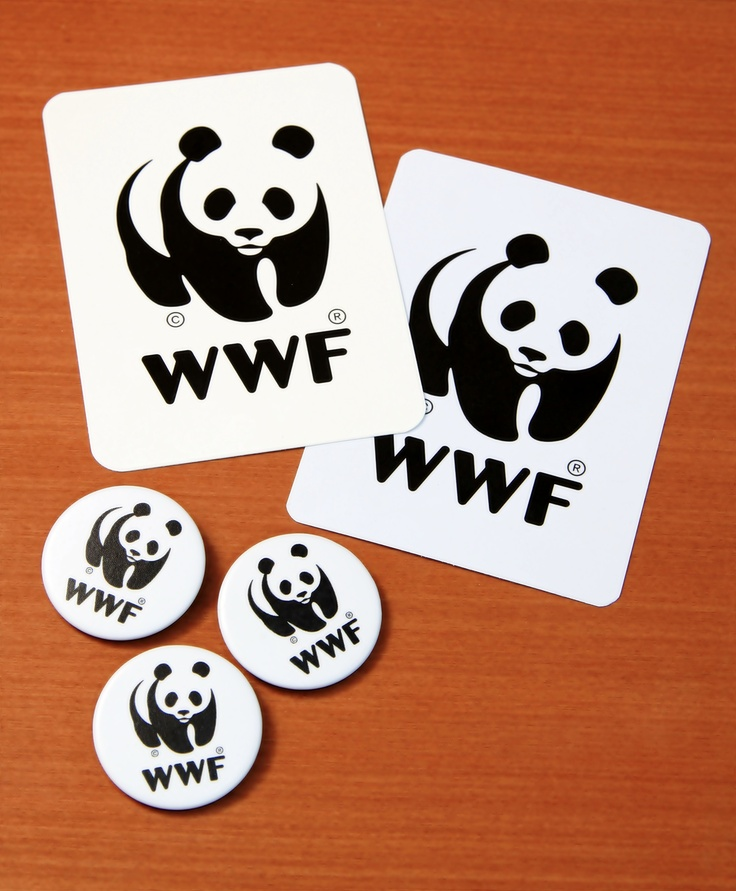Stickers and Pins WWF