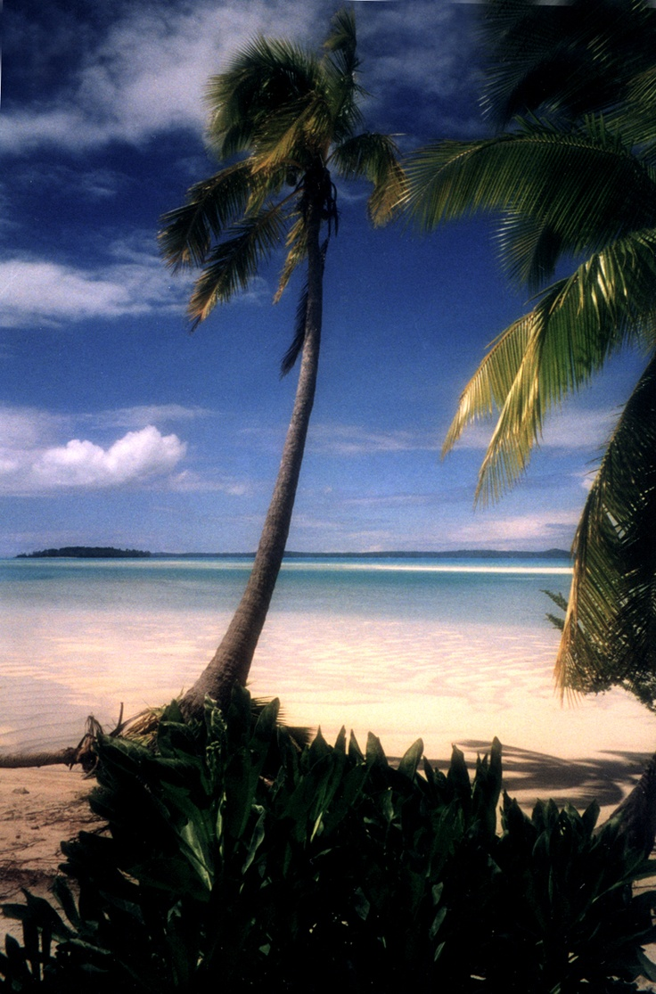 Island Escape- Aitutaki  http://zipolitazphotoz.blogspot.com/  Photo by Tina Winterlik   © 1999