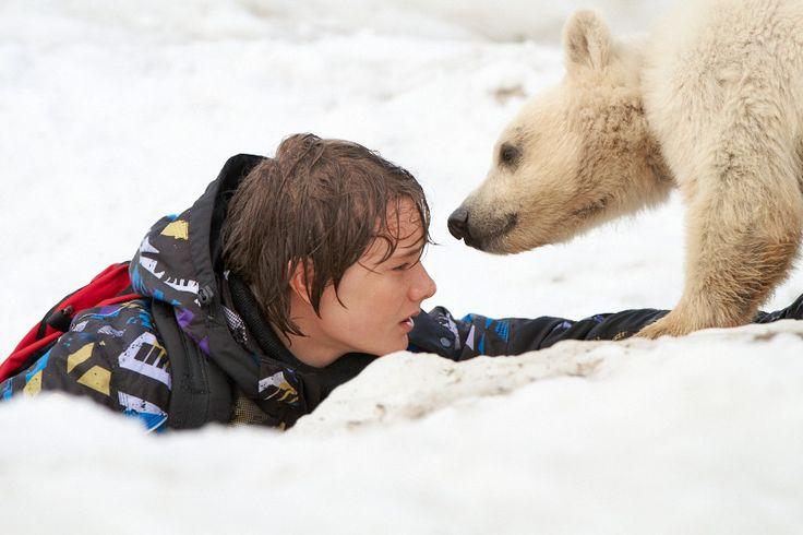 Il cucciolo lo guarda con l'aria di chi voglia farsi perdonare. Se mai un cucciolo d'orso può sorridere, ecco, questo lo sta facendo.