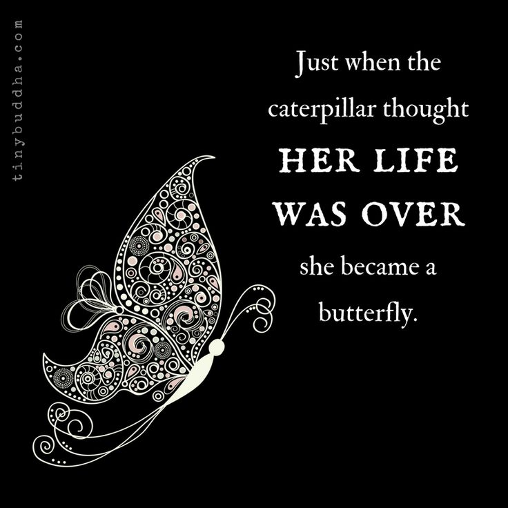 Just when you believe life can't change, you change, and then you feel as beautiful as a butterfly!