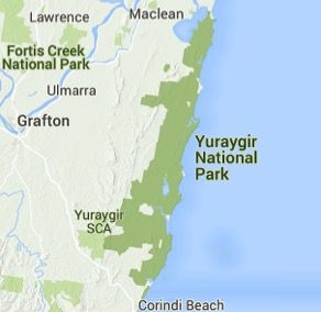 Yuraygir National Park is located between Yamba and Coffs Harbour, Try the Yuraygir Coastal walk, or enjoy whale watching, beach camping, swimming and fishing activities.