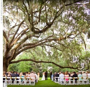 The couple was married under the long, arching branch of an oak tree. Forest Wedding in Santa Rosa Beach, Florida
