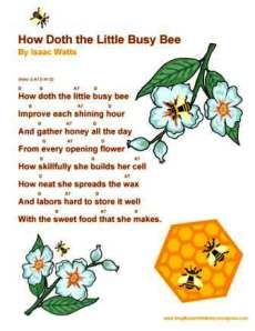 THE BEE SONG - Lyrics - International Lyrics Playground